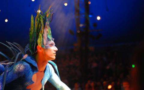 The Cirque du Soleil ; circus meets cinema